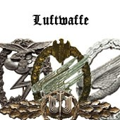 Luftwaffe War Badges