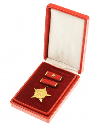 &copy DGDE GmbH - Medal Held der Arbeit - last model