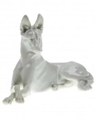 © DGDE GmbH - Shepherd Dog (Schäferhund) Allach – T. Kärner