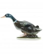 Duck, K. Himmelstoss - Rosenthal